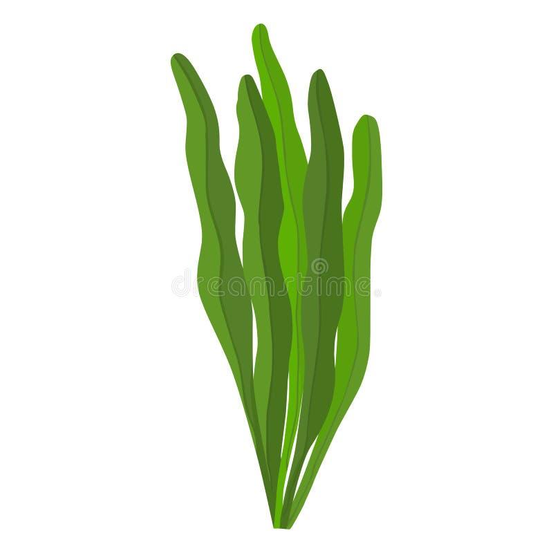 Διανυσματικό εικονίδιο αλγών Spirulina στο άσπρο υπόβαθρο διανυσματική απεικόνιση