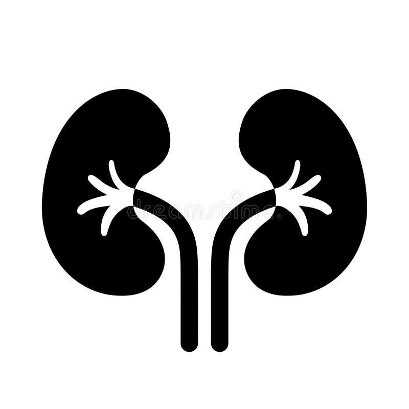 Διανυσματικό εικονόγραμμα νεφρών διανυσματική απεικόνιση