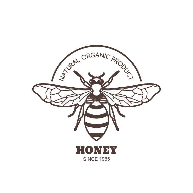 Διανυσματικό εκλεκτής ποιότητας σχέδιο ετικετών μελιού Λογότυπο ή έμβλημα μελισσών περιλήψεων Γραμμική μέλισσα στο άσπρο υπόβαθρο απεικόνιση αποθεμάτων