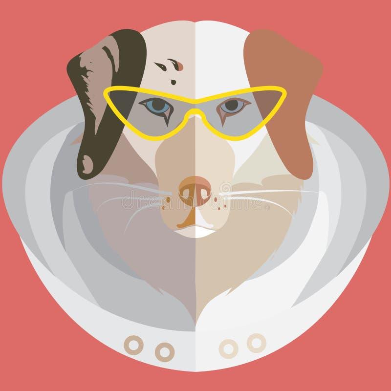 Διανυσματικό επίπεδο κεφάλι του αυστραλιανού ποιμένα με τα μοντέρνα γυαλιά και της κουκούλας σε ένα κοκκινωπό υπόβαθρο απεικόνιση αποθεμάτων