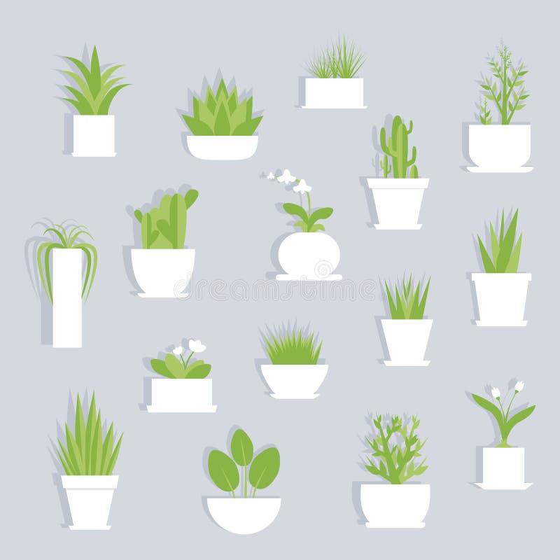 Διανυσματικό επίπεδο σύνολο Houseplants που απομονώνεται στοκ φωτογραφίες