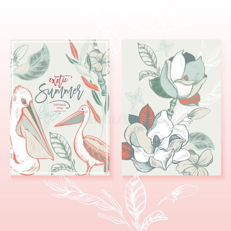 Διανυσματικό θερινοί τροπικό εκλεκτής ποιότητας σύνολο, Magnolia και πελεκάνος διανυσματική απεικόνιση