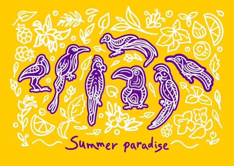 Διανυσματικό θερινό αφηρημένο σύνολο Τροπική ζούγκλα Πουλί γραμμών τέχνης, doodle εγκαταστάσεις, λουλούδι ελεύθερη απεικόνιση δικαιώματος