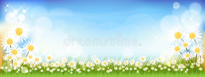 Διανυσματικό θερινό φόντο με χαριτωμένα μικροσκοπικά λουλούδια μαργαρίτα και πράσινα λιβάδια Ελατήριο φόντο με αφηρημένο θόλωμα διανυσματική απεικόνιση