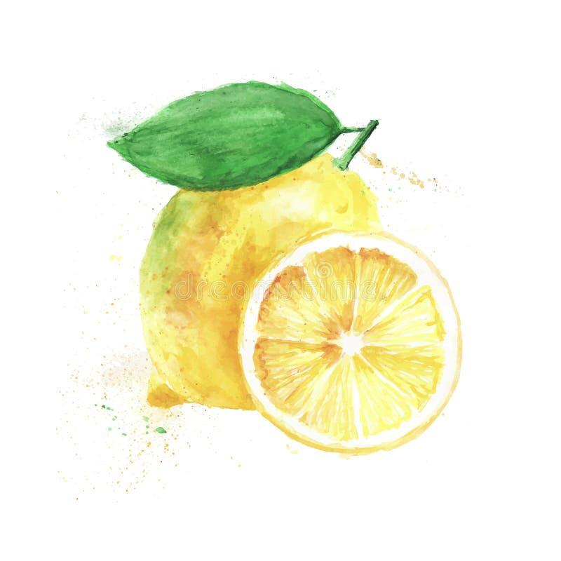 Διανυσματικό λεμόνι watercolor στοκ φωτογραφία με δικαίωμα ελεύθερης χρήσης