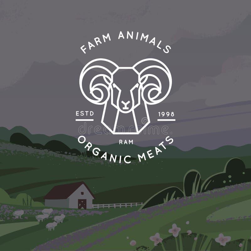 Διανυσματικό λογότυπο του οργανικού κρέατος, αγρόκτημα, οικολογικό αγρόκτημα με την εικόνα ενός κριού που σύρεται σε ένα γραμμικό απεικόνιση αποθεμάτων
