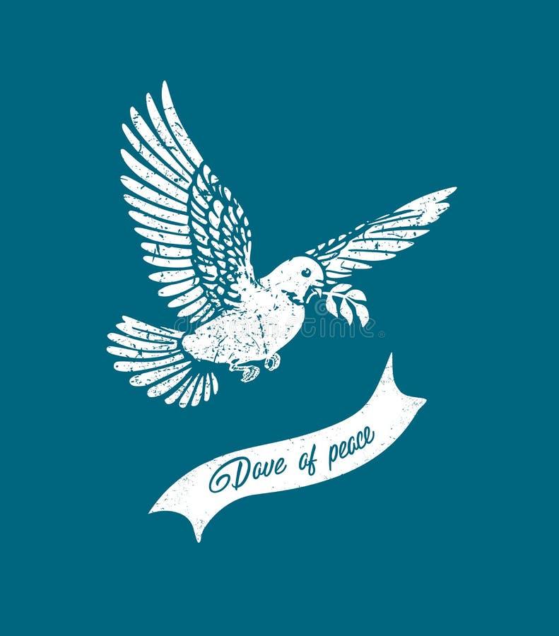 Διανυσματικό πετώντας grunge περιστέρι Άσπρη σκιαγραφία περιστεριών ελεύθερη απεικόνιση δικαιώματος