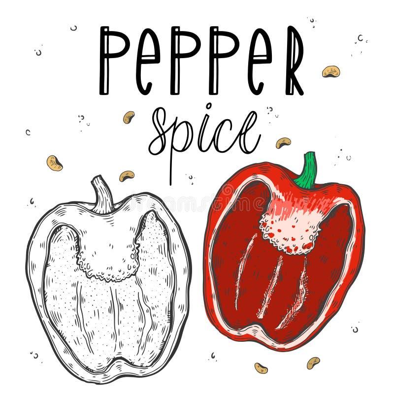 Διανυσματικό πιπέρι λαχανικών σε ένα ρεαλιστικό ύφος σκίτσων Υγιή τρόφιμα, φυσικό προϊόν, φυτικό αγρόκτημα, vegan τρόφιμα, αθλητι διανυσματική απεικόνιση