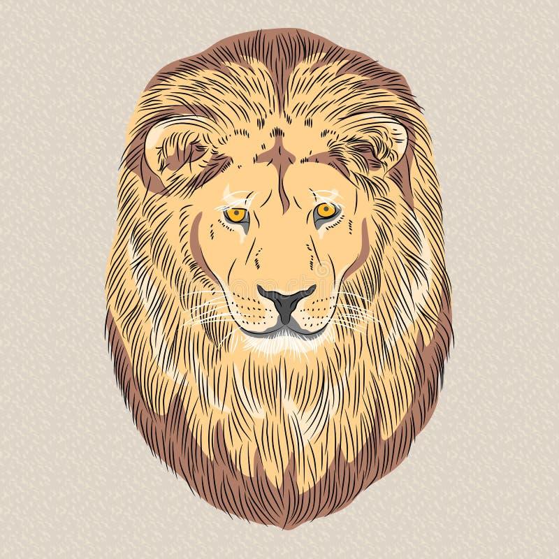 Διανυσματικό πορτρέτο κινηματογραφήσεων σε πρώτο πλάνο ενός σοβαρού λιονταριού διανυσματική απεικόνιση