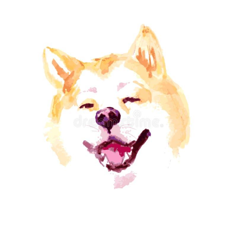 Διανυσματικό πορτρέτο σκυλιών akita watercolor καλλιτεχνικό που απομονώνεται στο άσπρο υπόβαθρο διανυσματική απεικόνιση