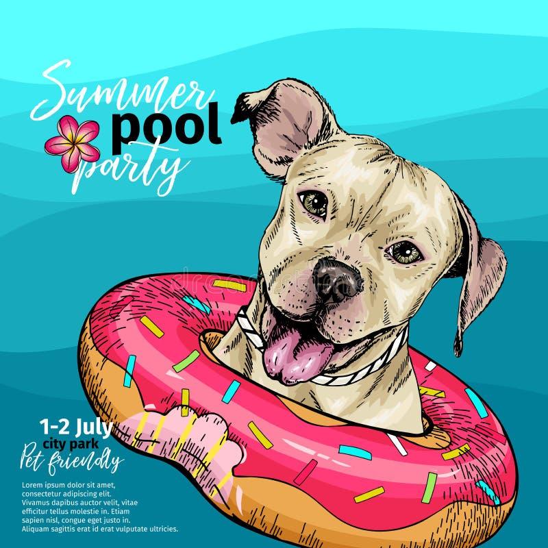 Διανυσματικό πορτρέτο του σκυλιού τεριέ πίτμπουλ που κολυμπά στο νερό Doughnut επιπλέον σώμα Paty απεικόνιση θερινών λιμνών Θάλασ ελεύθερη απεικόνιση δικαιώματος