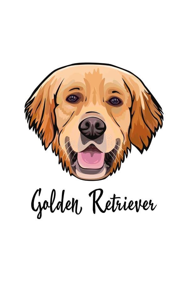 Διανυσματικό πορτρέτο χρυσό Retriever φυλής σκυλιών απεικόνιση αποθεμάτων