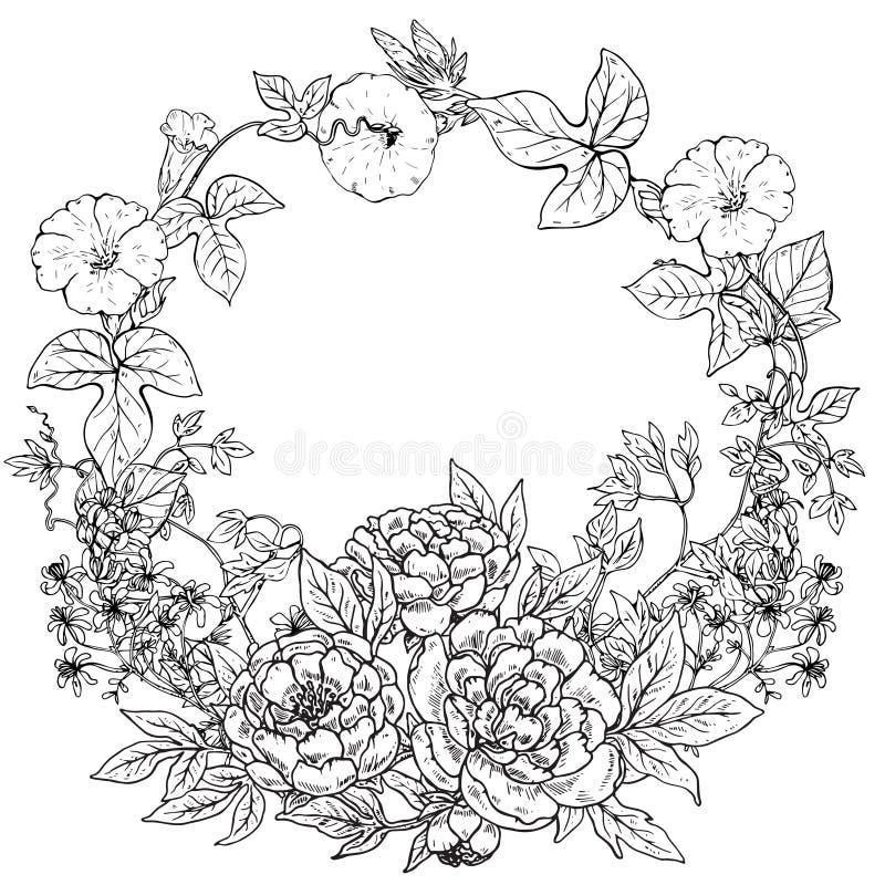 Διανυσματικό πλαίσιο με συρμένο το χέρι στεφάνι των peony λουλουδιών και των εγκαταστάσεων ελεύθερη απεικόνιση δικαιώματος