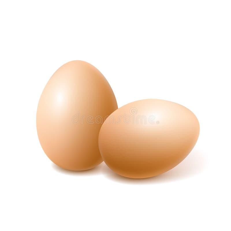 Διανυσματικό ρεαλιστικό καφετί αυγό κοτόπουλου, άνοιξη Πάσχας απεικόνιση αποθεμάτων
