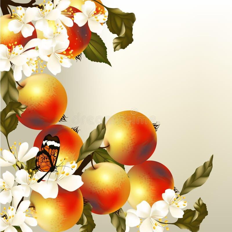 Διανυσματικό υπόβαθρο άνοιξη τέχνης με τα ρεαλιστικά μήλα και τα λουλούδια ελεύθερη απεικόνιση δικαιώματος