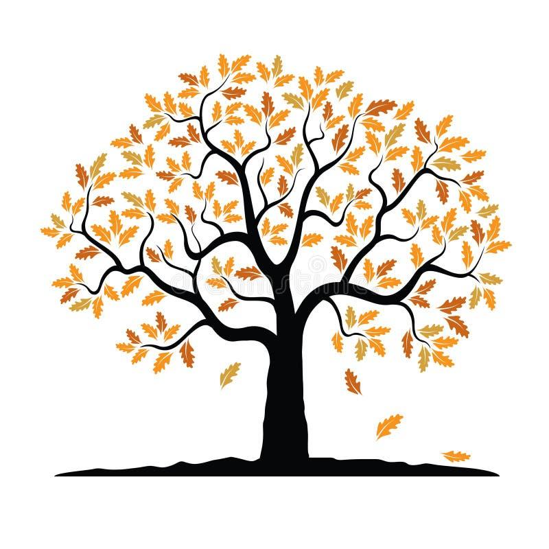 Διανυσματικό δρύινο δέντρο το φθινόπωρο διανυσματική απεικόνιση