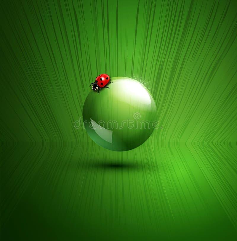 Διανυσματικό στοιχείο για το οικολογικό σχέδιο με το ladybug απεικόνιση αποθεμάτων