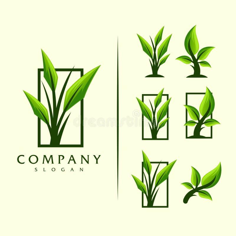 Διανυσματικό σχέδιο λογότυπων δέντρων φύλλων ελεύθερη απεικόνιση δικαιώματος