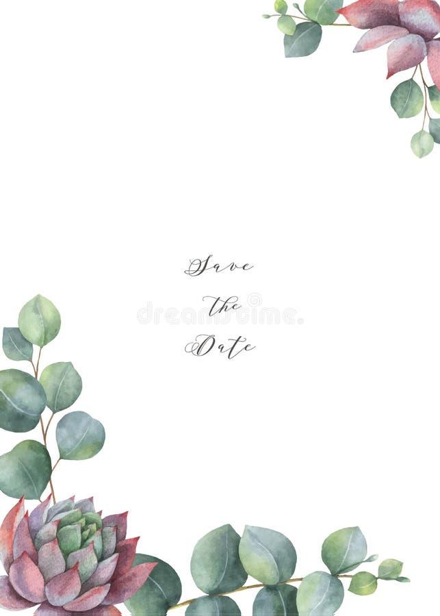 Διανυσματικό σχέδιο προτύπων καρτών Watercolor με τα φύλλα ευκαλύπτων και succulents διανυσματική απεικόνιση