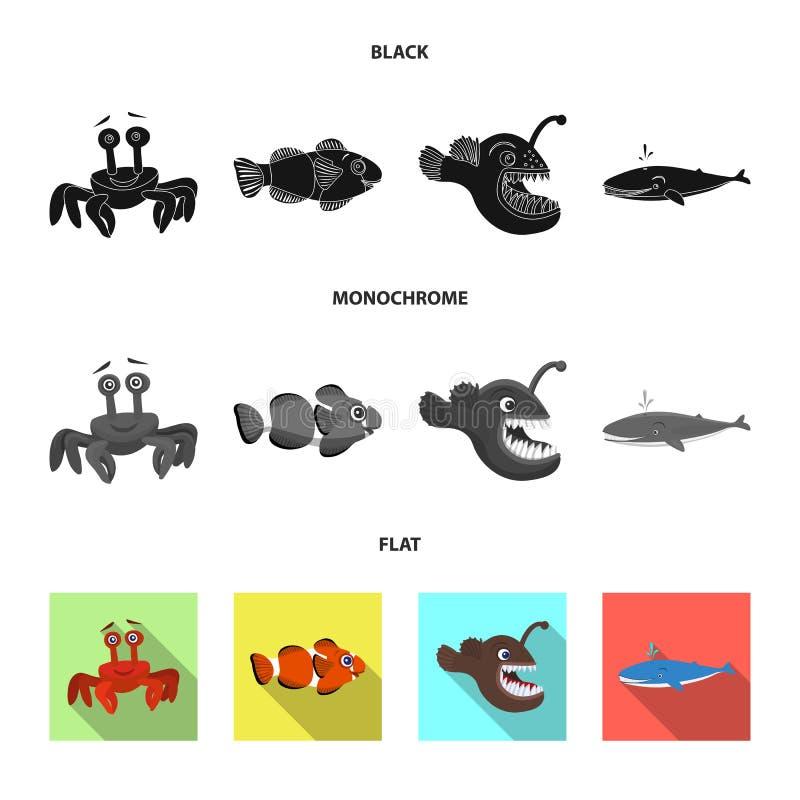 Διανυσματικό σχέδιο της θάλασσας και ζωικό σημάδι Συλλογή της θάλασσας και του θαλάσσιου συμβόλου αποθεμάτων για τον Ιστό ελεύθερη απεικόνιση δικαιώματος