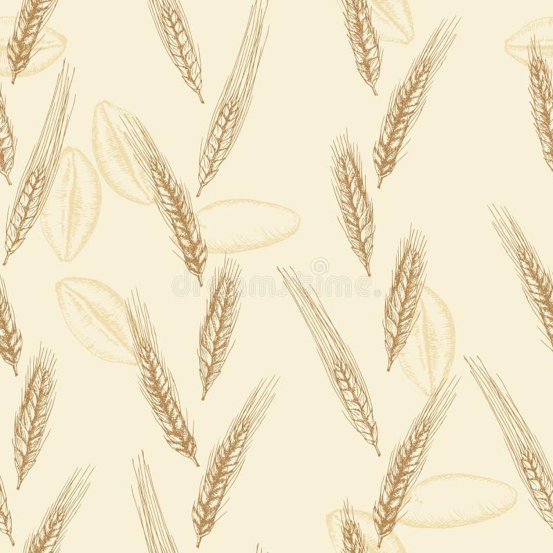 Διανυσματικό σχέδιο με spikelets σίτου διανυσματική απεικόνιση