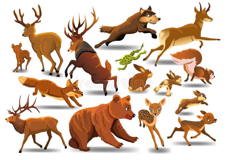 Διανυσματικό σύνολο άγριων δασικών ζώων όπως το αρσενικό ελάφι, αρκούδα, λύκος, αλεπού, τρέξιμο ελεύθερη απεικόνιση δικαιώματος