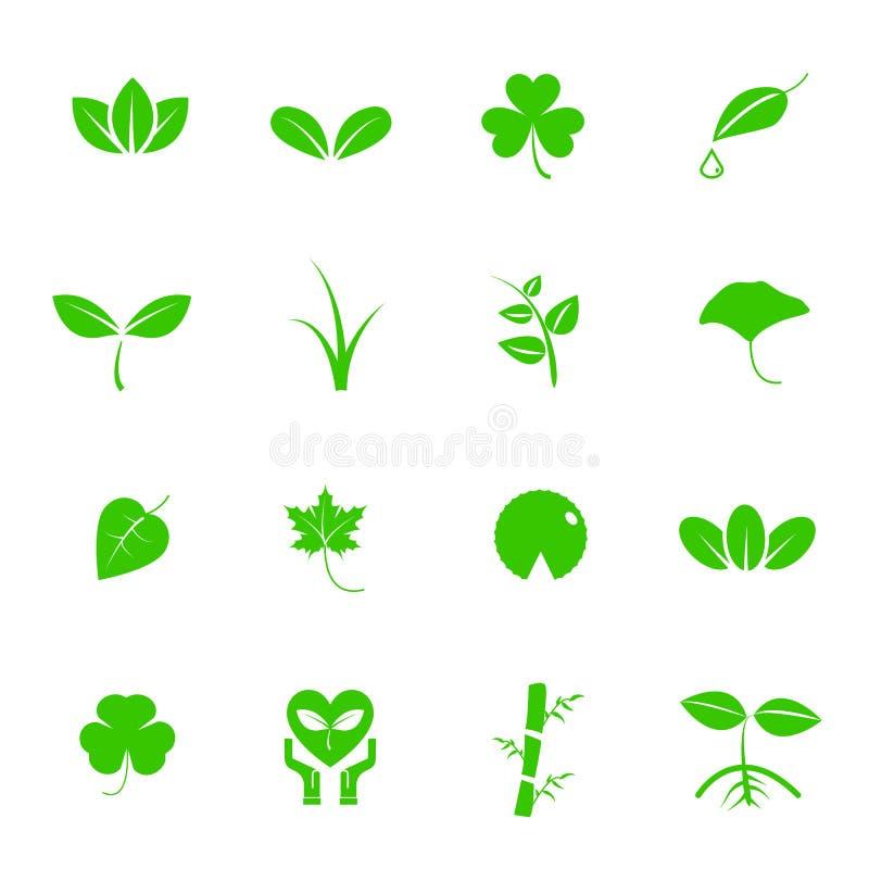 Διανυσματικό σύνολο εικονιδίων φυτού και φύλλων Έννοια φύσης και γεωλογίας Ener ελεύθερη απεικόνιση δικαιώματος