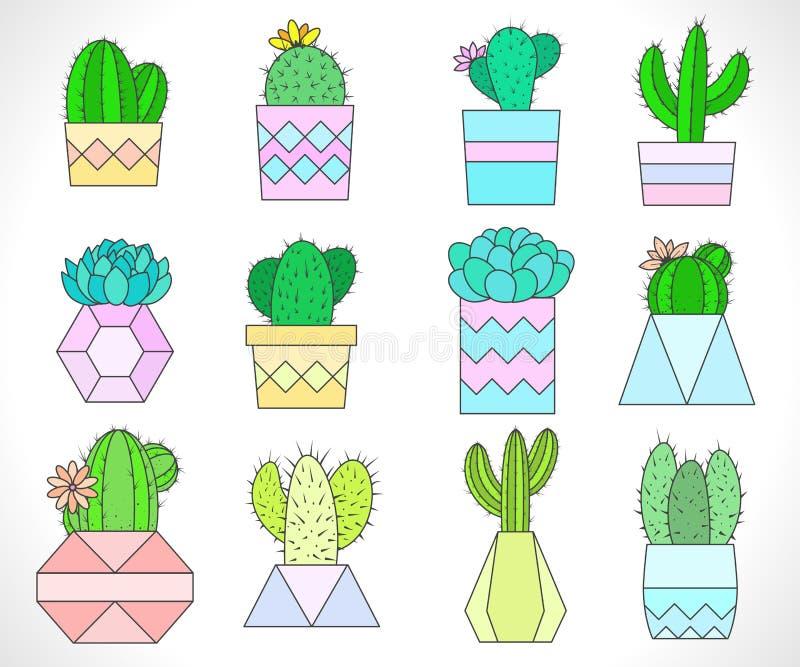 Διανυσματικό σύνολο κάκτων και succulents στα δοχεία λουλουδιών διανυσματική απεικόνιση