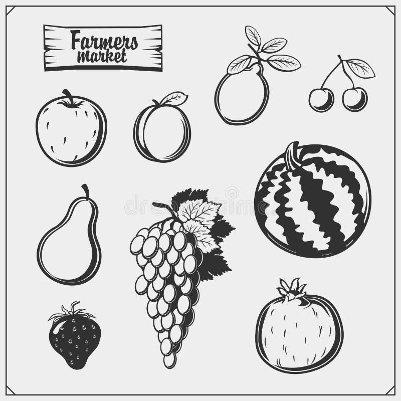 Διανυσματικό σύνολο φρούτων και μούρων που απομονώνονται στο άσπρο υπόβαθρο Εικονίδια αγοράς αγροτών ελεύθερη απεικόνιση δικαιώματος