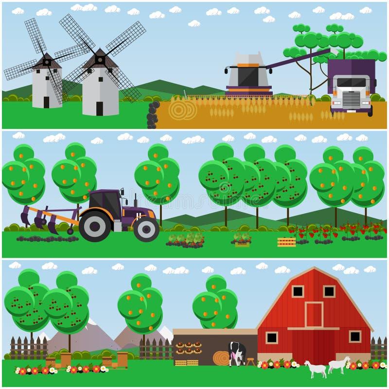 Διανυσματικό σύνολο αγροκτήματος, τομέας σίτου, αφίσες τοπίων επαρχίας ελεύθερη απεικόνιση δικαιώματος