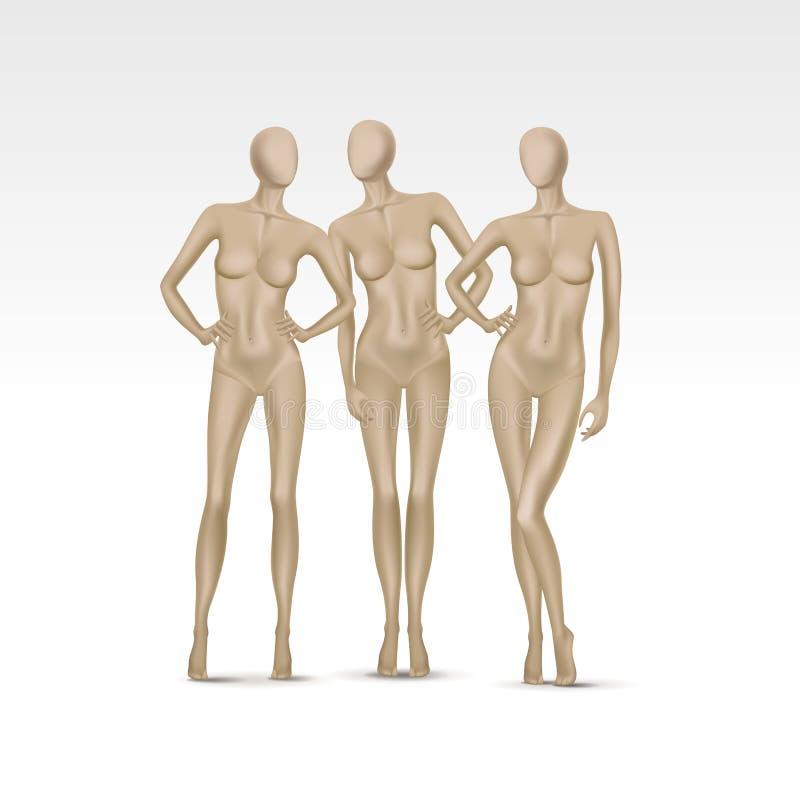 Διανυσματικό σύνολο απομονωμένων θηλυκών μανεκέν διανυσματική απεικόνιση