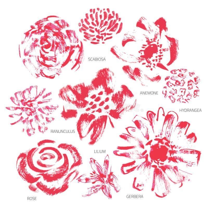 Διανυσματικό σύνολο λουλουδιών Grunge ή Watercolor - EPS10 διανυσματική απεικόνιση
