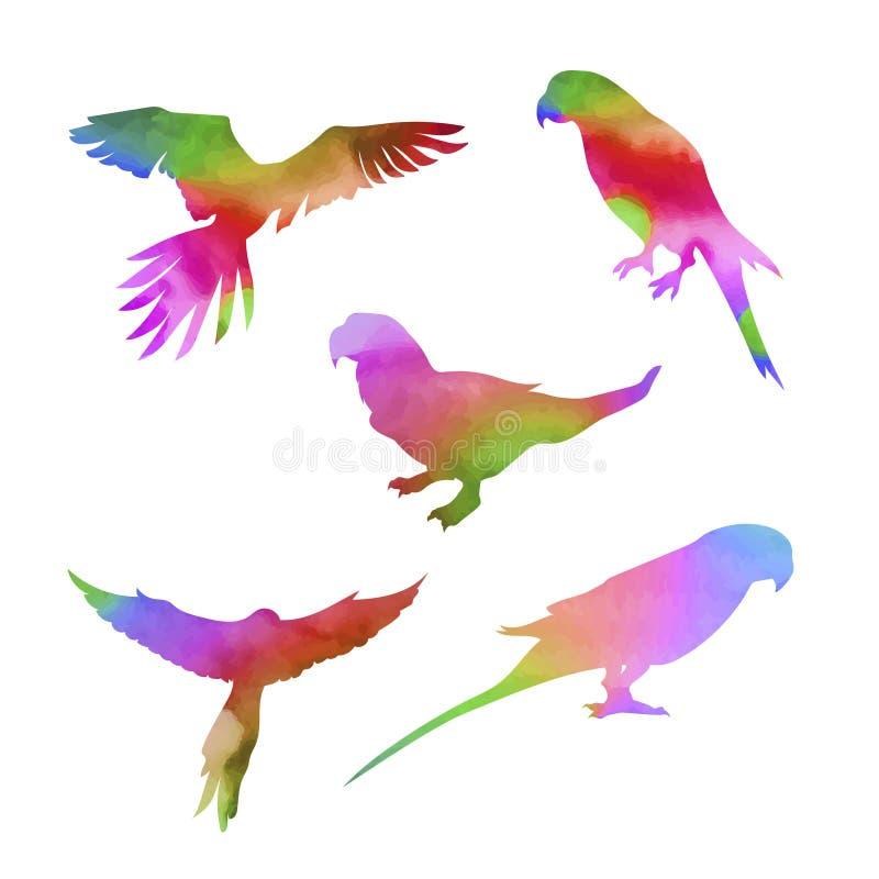 Διανυσματικό σύνολο παπαγάλων watercolor ελεύθερη απεικόνιση δικαιώματος