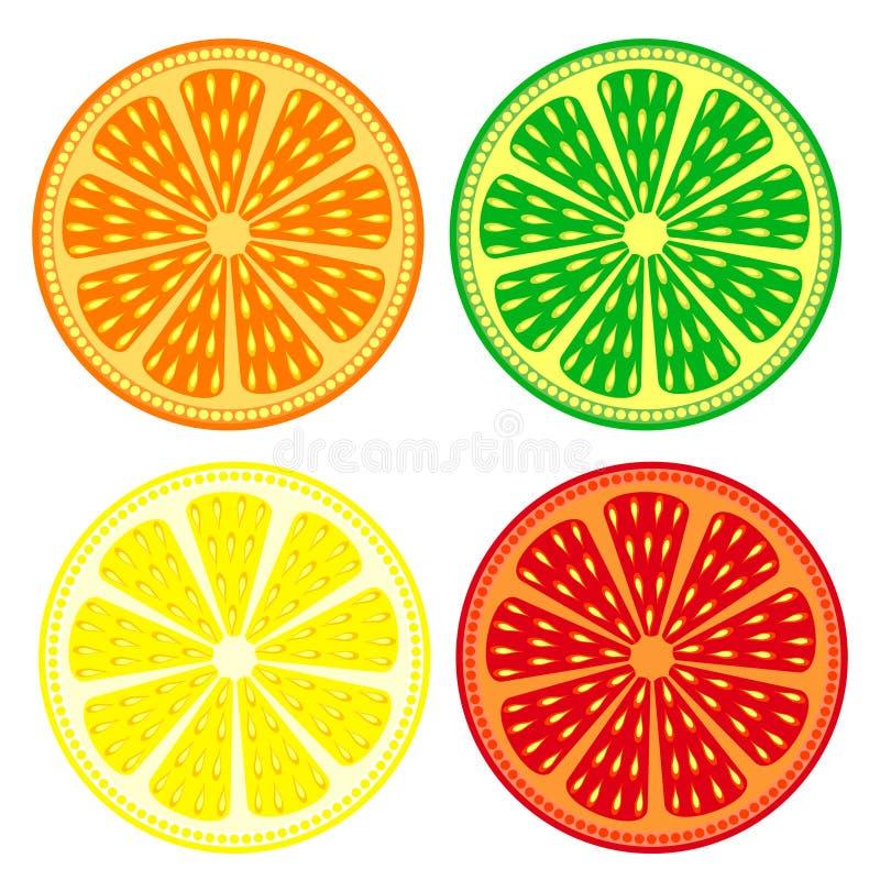 Διανυσματικό σύνολο φρούτων εσπεριδοειδών: πορτοκάλι, ασβέστης, λεμόνι, γκρέιπφρουτ, λεπτομερή εικονίδια; απομονωμένος πέρα από τ διανυσματική απεικόνιση