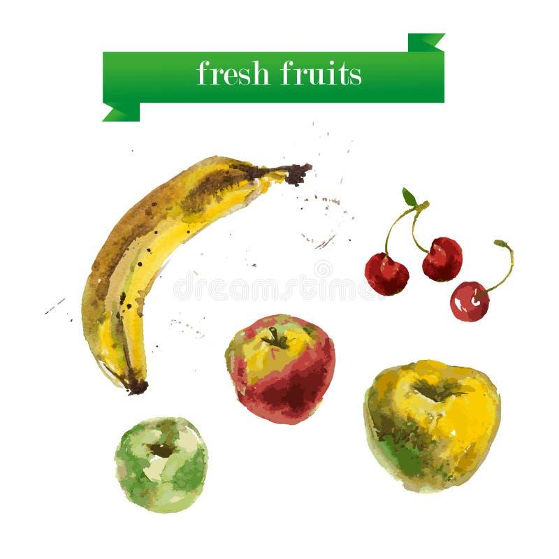Διανυσματικό σύνολο φρούτων watercolor στο άσπρο υπόβαθρο διανυσματική απεικόνιση