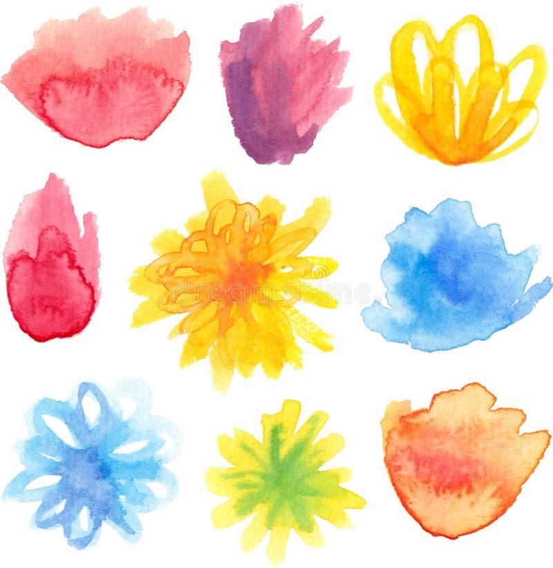 Διανυσματικό σύνολο φωτεινών floral ανθών watercolor διανυσματική απεικόνιση