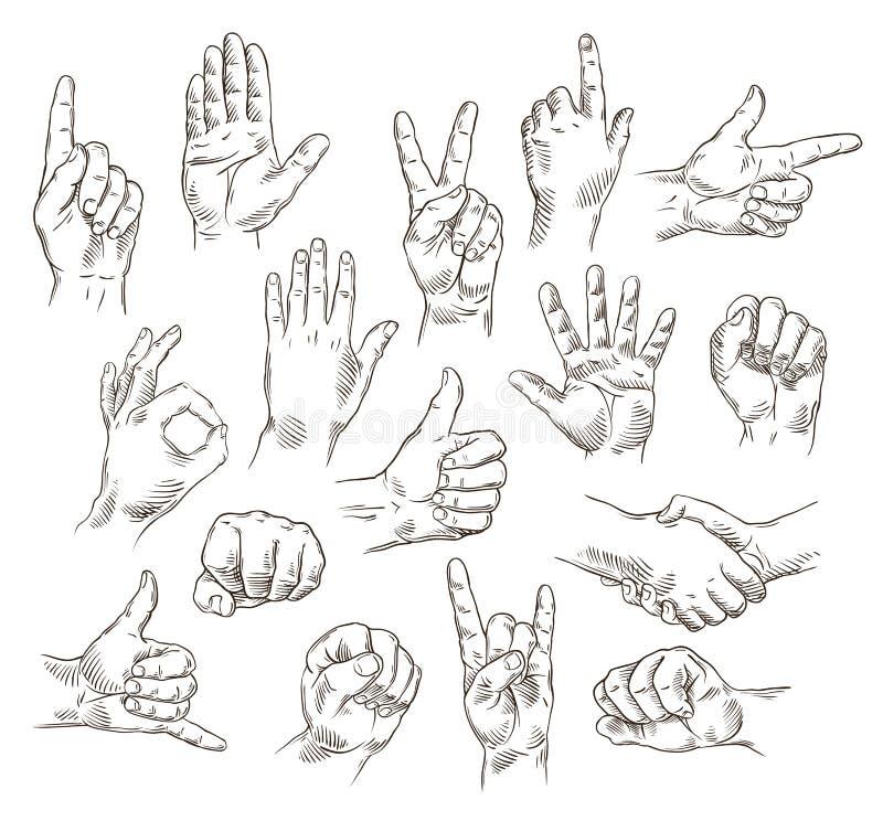 Διανυσματικό σύνολο χεριών και χειρονομιών - απεικόνιση περιλήψεων ελεύθερη απεικόνιση δικαιώματος