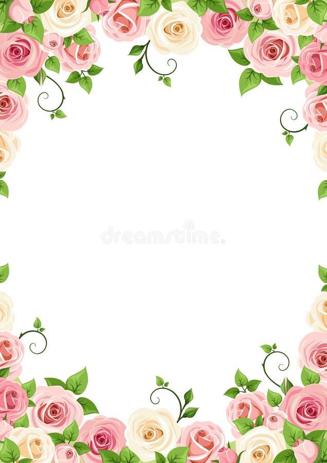 Διανυσματικό υπόβαθρο με τα ρόδινα και άσπρα τριαντάφυλλα διανυσματική απεικόνιση