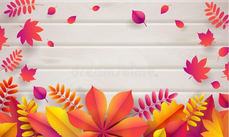 Διανυσματικό υπόβαθρο φθινοπώρου με την ελαφριά μπεζ ξύλινη σανίδα του δέντρου τέφρας και των πεσμένων φωτεινών φύλλων ελεύθερη απεικόνιση δικαιώματος