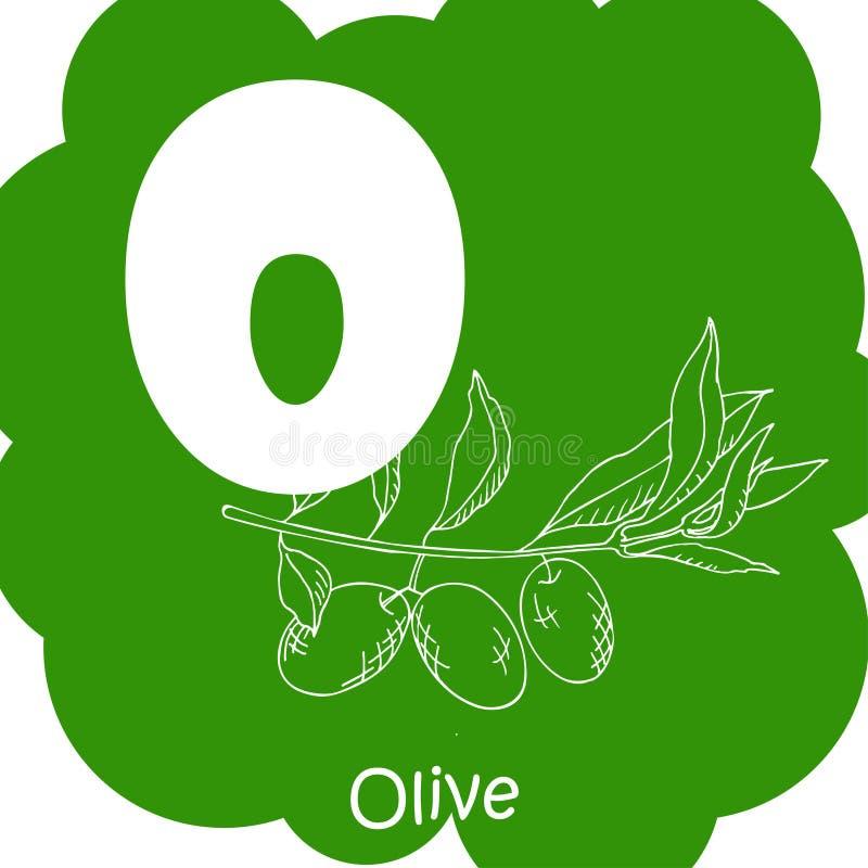 Διανυσματικό φυτικό αλφάβητο για την εκπαίδευση Απεικόνιση για τα κατσίκια Γράμμα Ο για την ελιά απεικόνιση αποθεμάτων