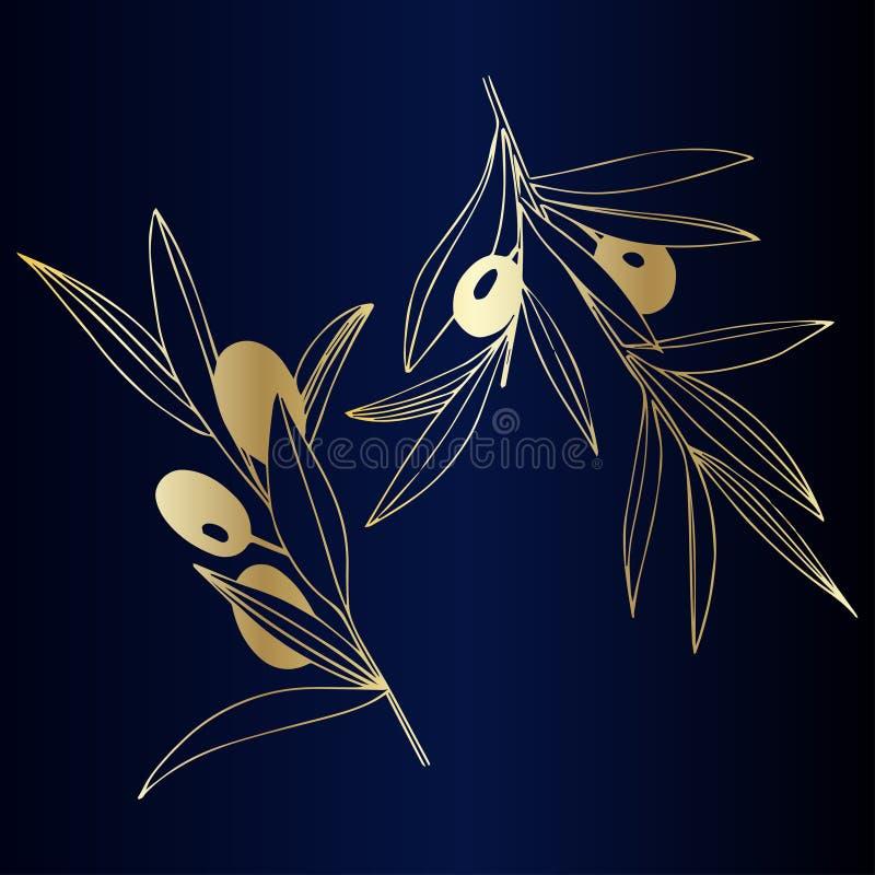 Διανυσματικό χρυσό κλαδί ελιάς Βοτανικό φύλλωμα εγκαταστάσεων Χρυσή χαραγμένη τέχνη μελανιού Απομονωμένο στοιχείο απεικόνισης ελι ελεύθερη απεικόνιση δικαιώματος