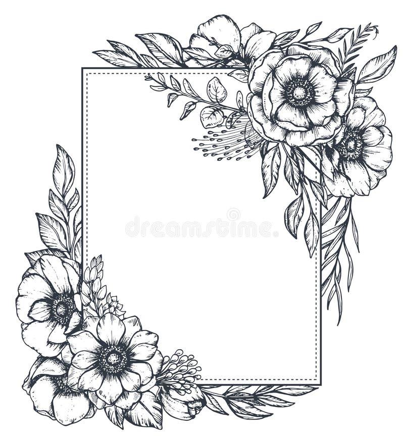Διανυσματικό floral πλαίσιο με τις ανθοδέσμες συρμένων των χέρι λουλουδιών anemone ελεύθερη απεικόνιση δικαιώματος