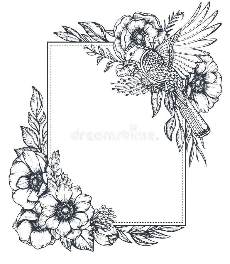 Διανυσματικό floral πλαίσιο με τις ανθοδέσμες συρμένων των χέρι λουλουδιών anemone διανυσματική απεικόνιση