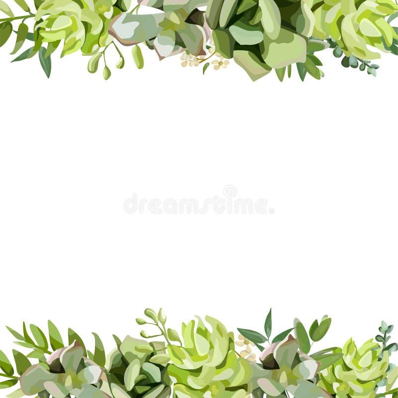 Διανυσματικό floral σχέδιο καρτών σχεδίου τετραγωνικό Μαλακός succulent, κάκτος διανυσματική απεικόνιση