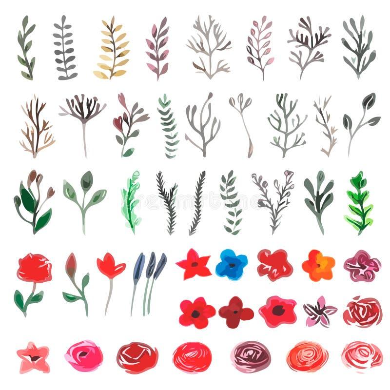 Διανυσματικό floral σύνολο Ζωηρόχρωμη floral συλλογή με τα φύλλα και το ΛΦ απεικόνιση αποθεμάτων