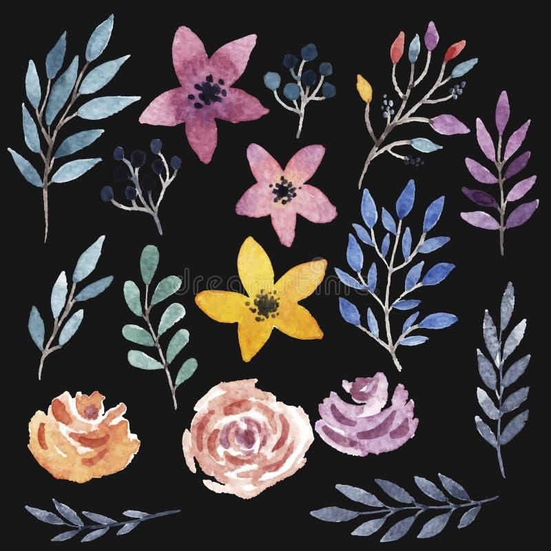 Διανυσματικό floral σύνολο στοκ φωτογραφίες