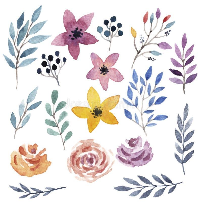 Διανυσματικό floral σύνολο στοκ εικόνα