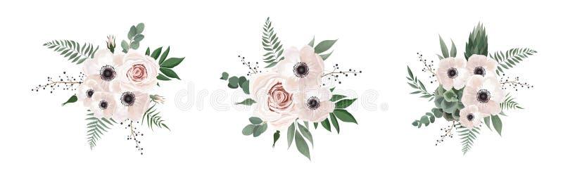 Διανυσματικό floral anemone σχεδίου ανθοδεσμών, κλάδος ευκαλύπτων Το γαμήλιο διάνυσμα προσκαλεί το σύνολο στοιχείων σχεδιαστών Wa απεικόνιση αποθεμάτων
