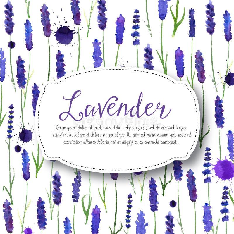 Διανυσματικό lavender watercolor υπόβαθρο διανυσματική απεικόνιση