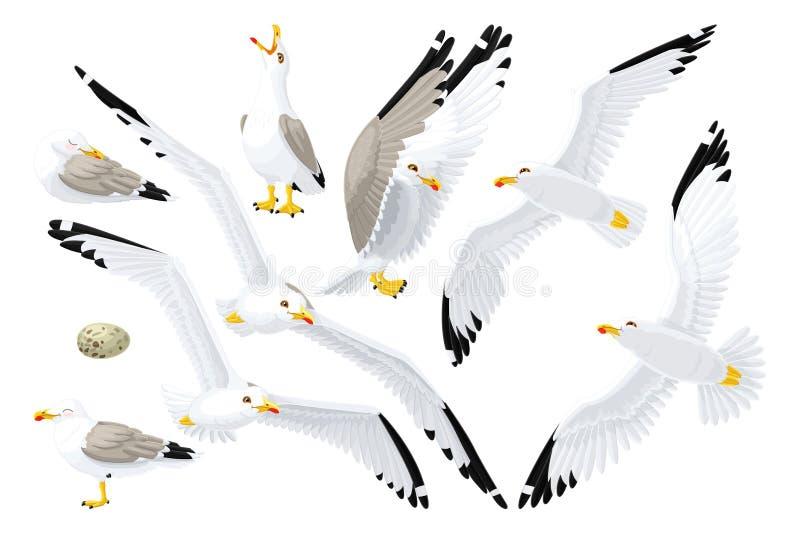 Διανυσματικό seagull σύνολο γλάρων απεικόνιση αποθεμάτων